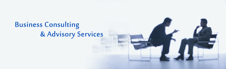 Business Consulting & Advisory Services